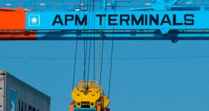 APM Terminals records profit bump