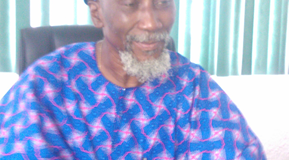 Only 75% Of Members Can Remove Me As NISA President - Labinjo