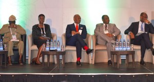 Power Sector: Large Environment For Investment - Nebo