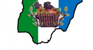 NNPP Adopts Jonathan As Its Candidate