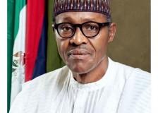 Buhari Galvanises FDI Drive, Pledges To Sustain Privatisation