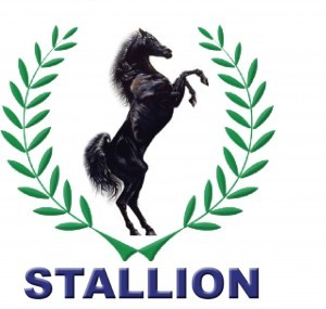 FG Tasks Stallion Group On 17% Local Content In Car Manufacturing