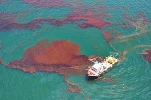 Report On Shell's Failure To Clean Niger-Delta Oil Spills - NGO