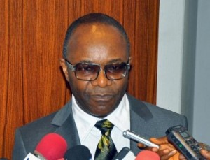 Nigeria Needs Long-Term Solution To Frequent Petrol Scarcity - Kachikwu