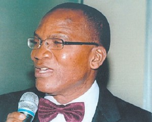 Nigeria To Assist South Sudan In Debt Management – Nwankwo