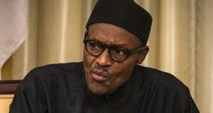 Suspend vehicle importation ban, Reps tell Buhari