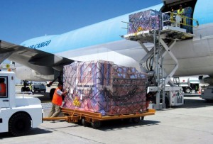 Nigeria Can Overtake Kenya's $1bn Per Annum Perishable Cargo Export