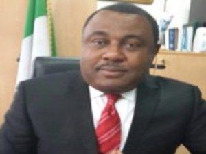 Nigeria Needs A Chartered Institute Of Licensed Customs Brokers - Nwabunike