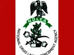 International Day against Drug Abuse: Over 7million Nigerians Affected – NDLEA