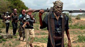 Boko Haram attack: NNPC suspends oil search in Chad Basin