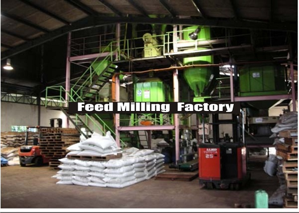 Understanding The Operating  Standards  For  The  Feed  Milling  Industry