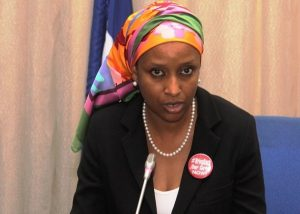 NPA MD Assures Investors On Ease Of Doing Business At Ports