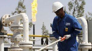 Nigeria crude oil: India slashes import