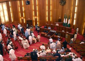 Senate Postpones MTEF Passage over Fears on OPEC Oil Cuts