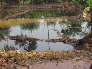 Nigeria's Oil Rich Bayelsa State Opens Oil Spills Inquiry