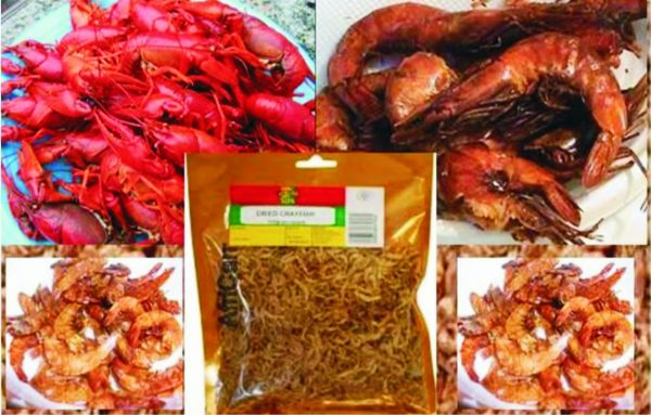 How To Start Profitable Crayfish Business For Export