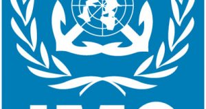Maximizing Potentials For Nigeria's IMO Council Bid