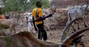 Curbing The Incessant Fulani Herdsmen Massacre In Nigeria