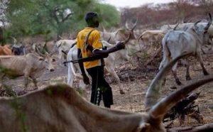 Curbing The Incessant Fulani Herdsmen Massacre In Nigeria