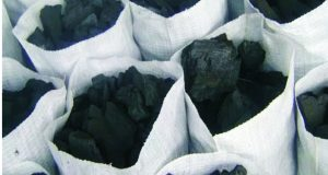 How To Begin A Lucrative Charcoal Export Business