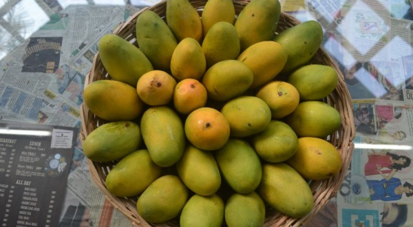How To Maximize Potentials For Mango Exports