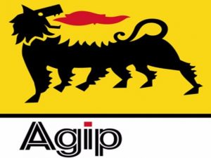 Agip Enhance Local Capacity With Geoscience Workstations