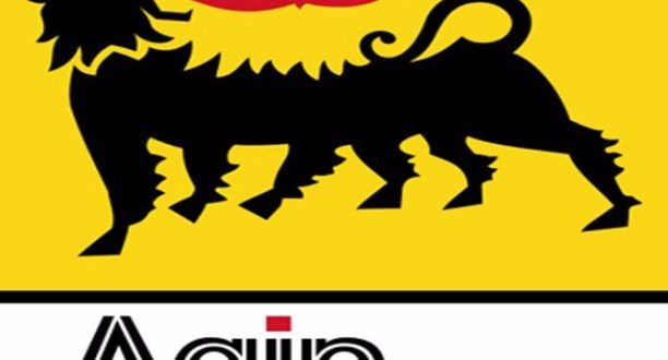 FG Wants Agip To Partake In N'Delta Remediation