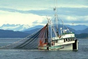 Fish Trawling Sailors Pay Thugs N1million For Security Per Voyage