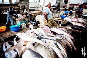 Nigeria Spends N288bn on Fish Importation Annually