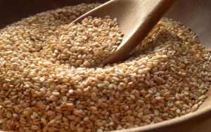 How to Start a Sesame Seed Export Business in Nigeria