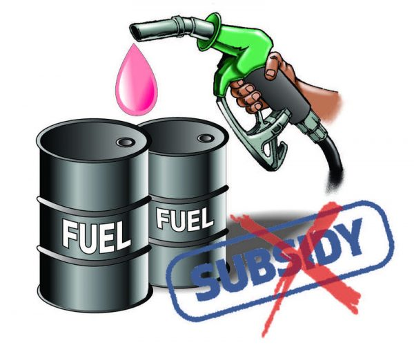 Subsidy removal advice wrong, implementation suicidal, says NUPENG