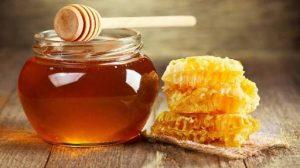 Exploring Opportunities In Honey Export Business