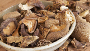 Exporting Dried Mushrooms To Europe