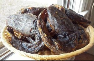 How To Start Dried And Smoked Catfish Business In Nigeria