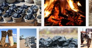How To Explore Charcoal Export Business In Nigeria