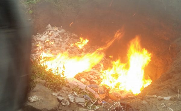 Customs Destroy Frozen Turkey Worth N3.4million