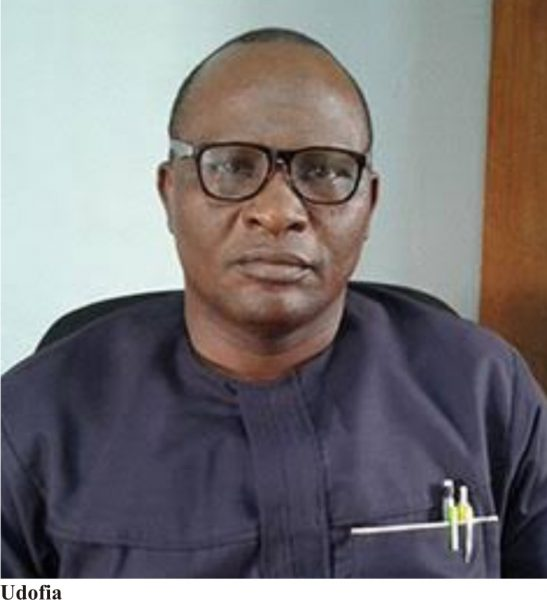 How Absence Of Export Base Hampers Efficiency Of Nigerian Ports - Udofia
