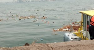 BEARS: Dirty Apapa Jetty