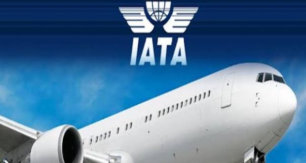 91,380 Nigeria Aviation Workers May Lose Their Jobs- IATA
