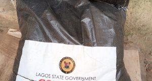 BULLS: A New Lagos