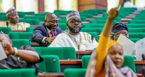 Constitution amendment: Reps propose independent candidacy