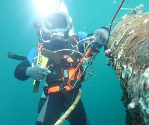 Divers blame Ministry of Labour for Unregulated Practices, Foreign Dominance