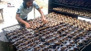 Fish Export: Addressing Nigeria's Challenges