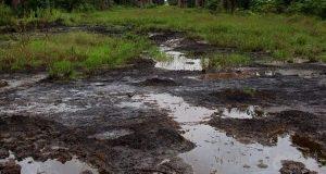 NGO tackles Chevron over oil spill in Gbaramatu