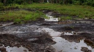 NGO tackles Chevron over oil spill in Gbaramatu