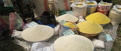 How To Export Cassava Granules From Nigeria