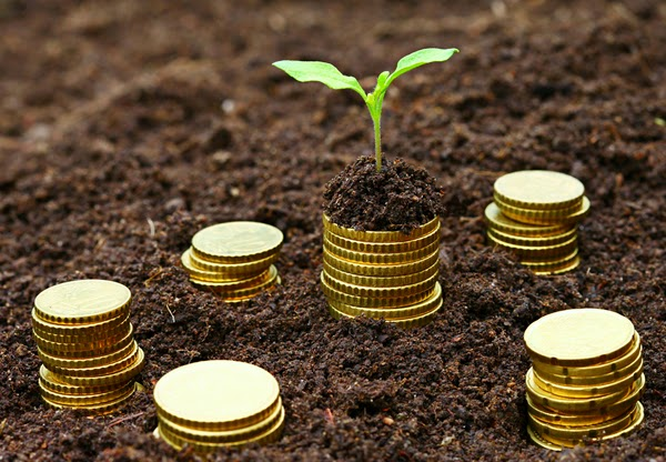 How Microfinance Banking Alleviates Poverty, Fosters National Development