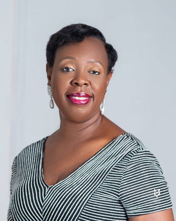 WIMAFRICA Gets Consultative Status On UN Economic and Social Council